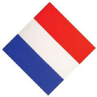 BANDANA FRANCE TRICOLORE